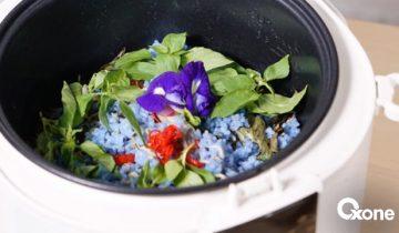 Bunga Telang, Edible Flower yang Bikin Indah Hidangan